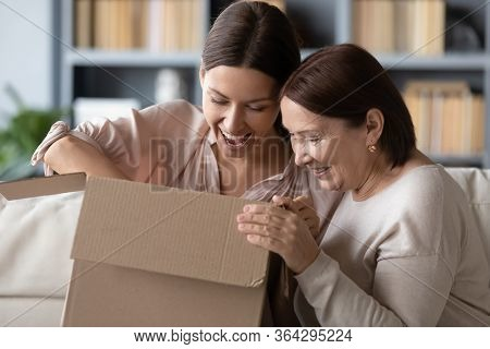 Surprised Middle Aged Mother And Adult Daughter Unpacking Parcel Together