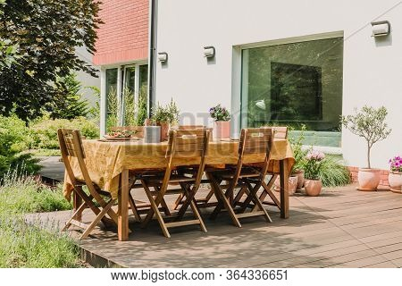 Lot Of Green Plants In Big Beautiful Garden With Trendy Furniture On The Terrace