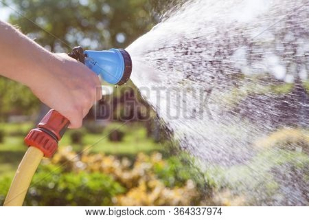Woman's hand with garden hose watering plants