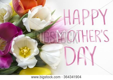White And Pink Tulips On Wooden Background. Mother's Day Concept.