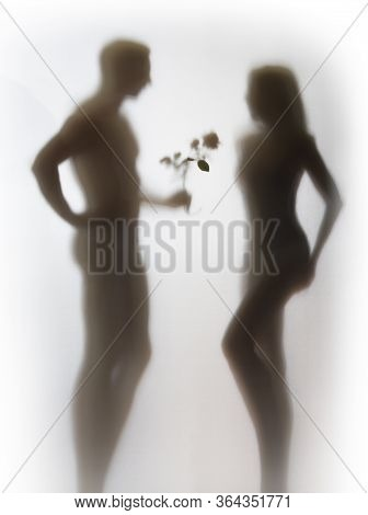 Beautiful Slim Woman Receives Love Symbol, A Flower By A Muscular Man. Male And Female Human Body Si