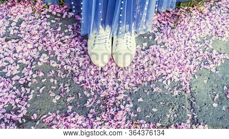 White Sneakers And Blue Skirt. Top View Of Sakura Petals On Asphalt. Photo Banner.