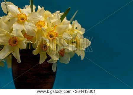A Bouquet Of Daffodils Close-up In A Clay Vase. White Daffodils With A Yellow Middle, Useful For Pos