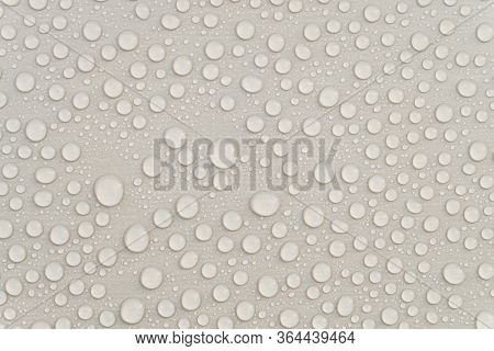 Waterproofing Stain Dye Coating For Construction. Water Drops On A Gray Colored Surface.