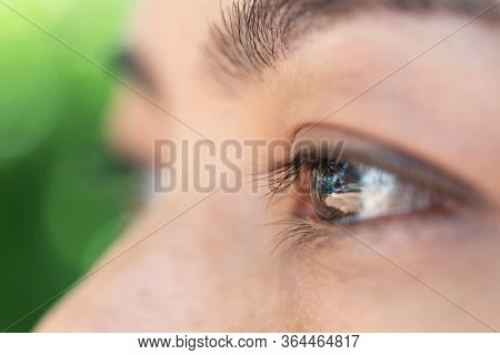 Macro Of Eye Or Eyeball Black Color Of Asian Woman With Eyebrow, Eyelash And Eyelid In Concept Eye H