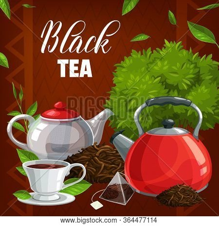Black Tea Cup, Green Leaves, Teabag And Brew Pot. Vector. Hand Picked Premium Indian Or Ceylon Tea.