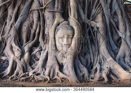Head Of A Buddha Statue Enclosed In The Roots Of A Sacred Fig Tree, In The Ruins Of Wat Mahathat Tem
