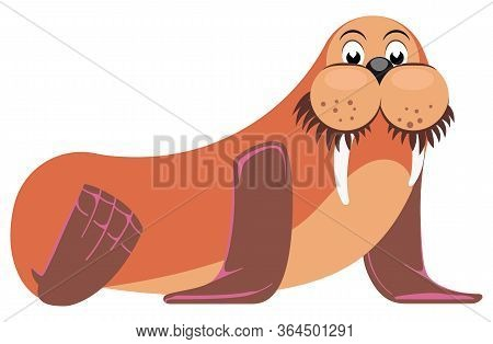 Cute Cartoon Flat Walrus Side View Isolated On White Background. Vector