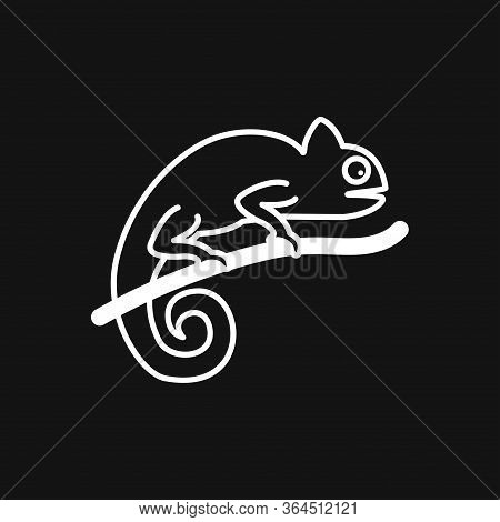 Vector Lizard Icon On White Background, Vector Gecko