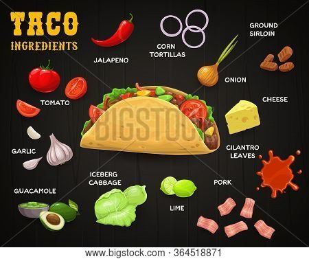 Taco, Vector Mexican Fast Food With Ingredients. Corn Tortilla With Meat And Vegetables, Chilli Or J