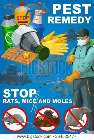 Pest Remedy, Rodents Extermination, Deratization Sanitary Control Service Vector Poster. House Rats,