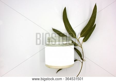 Organic Cosmetics With Coconut Oil And A Green Branch Of Eucalyptus On White Background Top View Moc