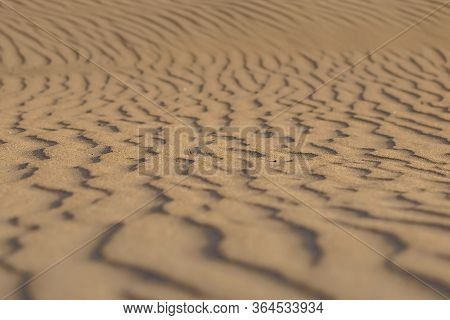 Detail Of Ripples And Waves In Sand On The Beach. Repetitive Natural Form On Dry Arid Land.