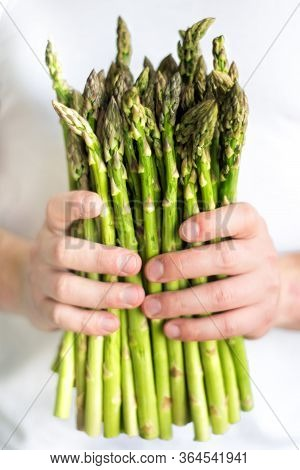 Vertical Picture Of Bundle Of Green Asparagus In Hands Of Man. Mens Hands Pick Bunch Of Fresh Aspara