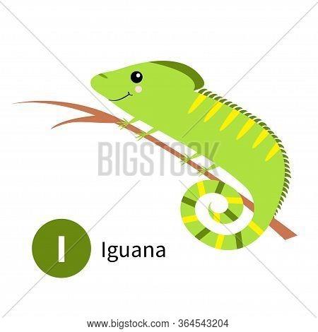 Letter I. Iguana. Zoo Animal Alphabet. English Abc With Cute Cartoon Kawaii Funny Baby Animals. Educ