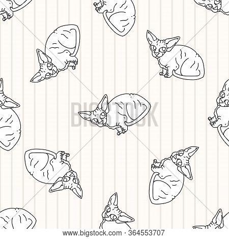 Cute Cartoon Monochrome Sphynx Kitten Seamless Vector Pattern. Pedigree Exotic Kitty Lineart Breed D