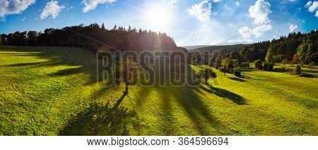 Panoramic Aerial Landscape In The Morning: Contrasty Scenery With The Sun In The Blue Sky, Trees On