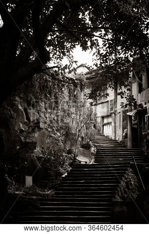 Stairs and tree in Xiahao Old street in Chongqing, China.