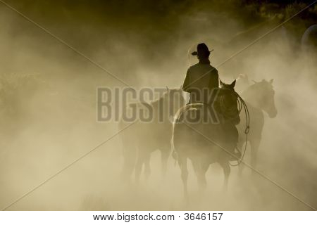 Cowboy In The Dust
