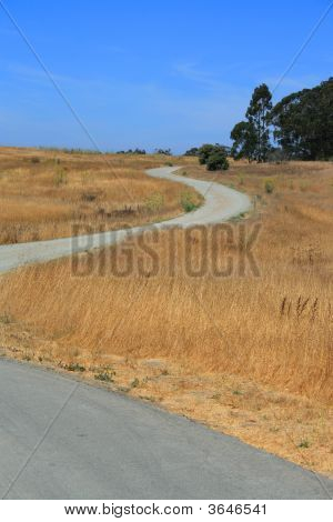 Windy Road