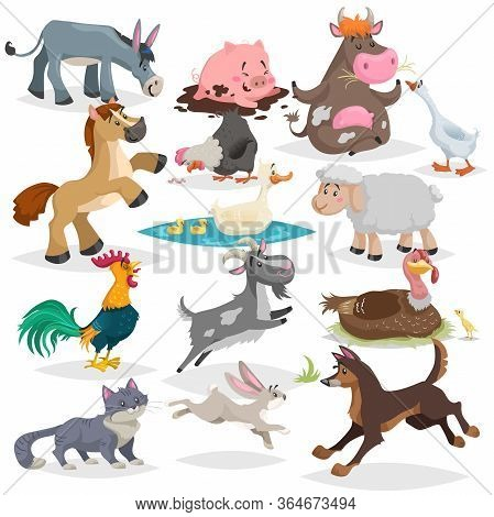 Cute Farm Animals Set. Collection Of Cartoon Vector Drawings In Flat Style. Donkey, Goat, Horse, She
