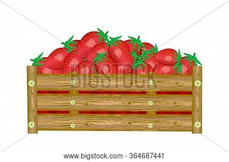 Strawberries In Box Isolated On White Background. Crate Of Juicy Berries. Eco Farm, Market, Transpor