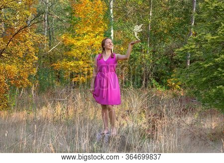 Beautiful Girl Staring At Fairies In A Magical Forest . Fantasy Concept. Girl And Fairy In The Fores