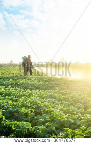 A Farmer Sprays A Potato Plantation With Pesticides. Protecting Against Insect Plants And Fungal Inf