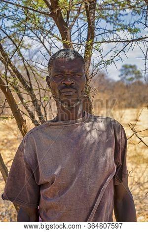 Motswana, African man in the bush next to a tree , Kalahari in Botswana