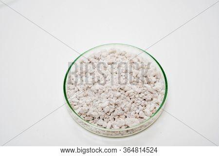Perlite mineral Stone in petri dish on white background