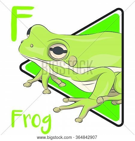 F For Frog, The Animal That Can Be Found Anywhere And Frog Is An Amphibian Animal That Doing Metamor
