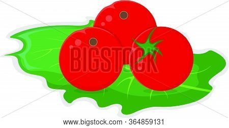 Small Red Tomato Cherry Lay On Green Salad Leaf Concept Isolated On White, Cartoon Vector Illustrati