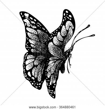Ink Butterfly Hand Drawing, Doodle Insect Sketch, Monochrome, Print, Tattoo. Painted In Black Inky G