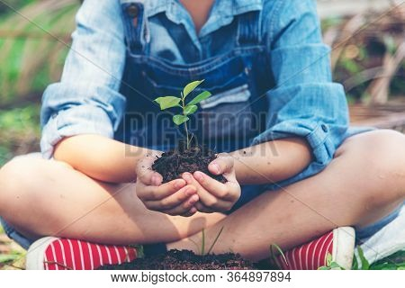 Hands Child Holding Young Plants Keep Environment On The Back Soil In The Nature Park Of Growth Of P