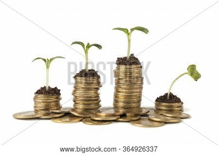 Strong And Weak Sprout On Coins Isolated On White Background. Сoncept Of Global Crisis, Fall Of Doll
