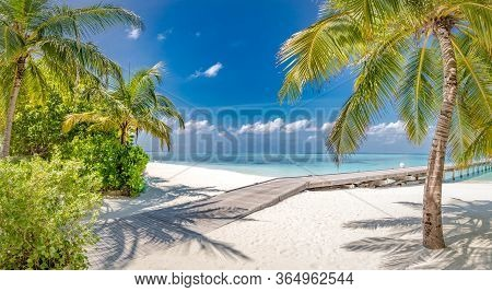 Tropical Beach, Maldives. Jetty Pathway Into Tranquil Paradise Island. Palm Trees, White Sand And Bl