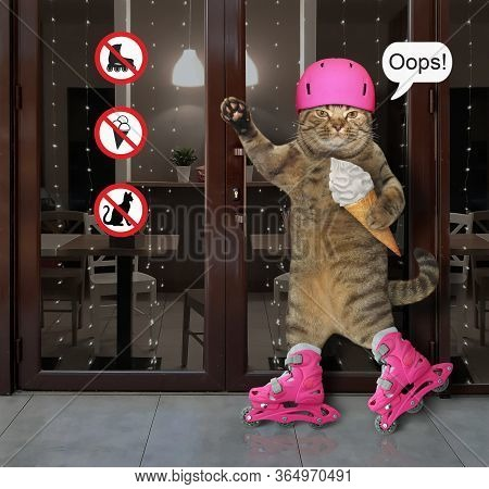 The Beige Cat In A Pink Protective Helmet With A Ice Cream Cone Is Skating On Rollerblades Past A Ca
