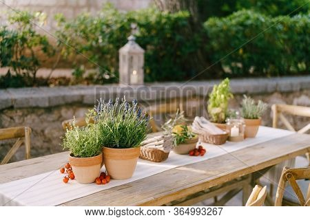 Wedding Dinner Table Reception At Sunset Outside. Ancient Rectangular Wooden Tables With Rag Runner,