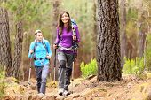 Hikers in forest. Couple hiking in fall forest. Asian woman hiker in front smiling happy. Photo from Aguamansa, Orotava, Tenerife, Canary Islands, Spain. poster