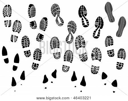Set Of Vector Silhouettes Boots Print.