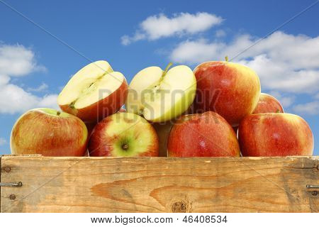 bunch of braeburn apples and a cut one in a wooden crate against a blue sky with clouds
