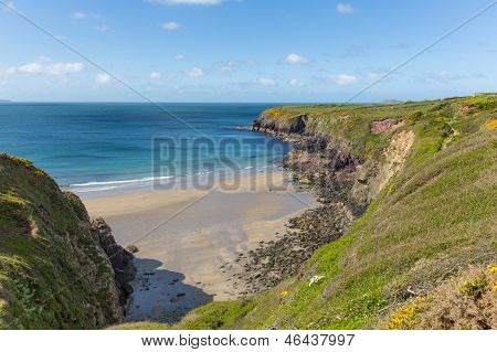 Wales Coastal Path Caerfai Bay Pembrokeshire West Wales UK in the Coast National Park