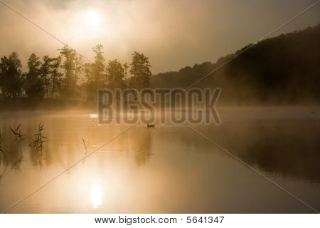 Beautiful sunrise on a very early morning. Fog was coming out of lake in front of sun, looked very beautiful and magical. poster