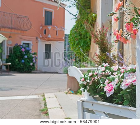 Street With Flowers