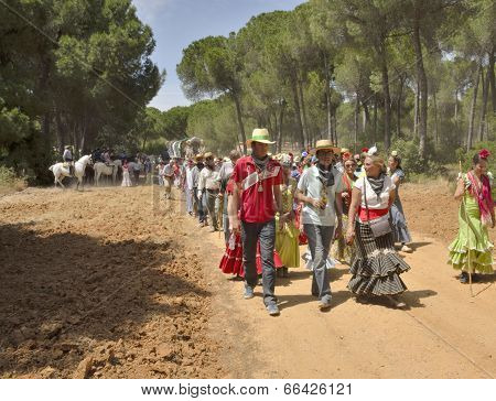 The Way Of El Rocio