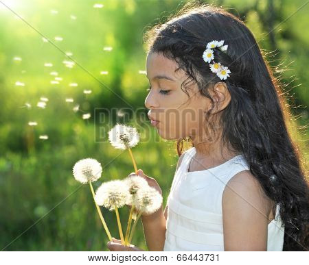 Summer wishes