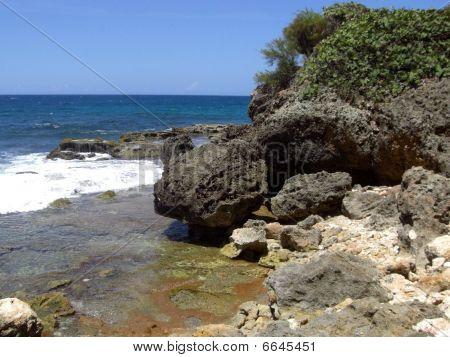 Beach and volcano rocks