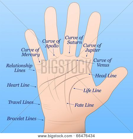Palmistry Right Hand Blue