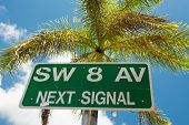 Street sign marking the 8th street in Little Havana, a focal point of the cuban community in Miami poster