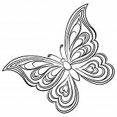 Butterfly, hand-draw monochrome contours on a white background. Vector poster